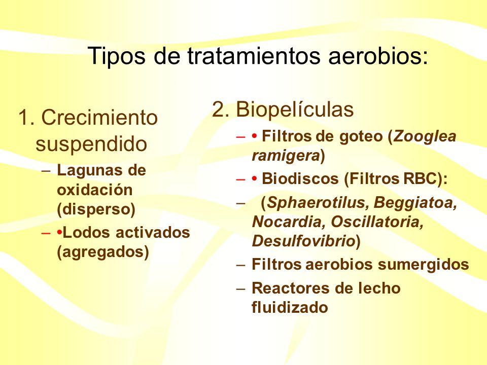 Tratamiento de aguas residuales: Trata. 1rio + Trata. 2rio = Remoción 80-90% DBO Posterior a un tratamiento de sedimentación primaria los desperdicios