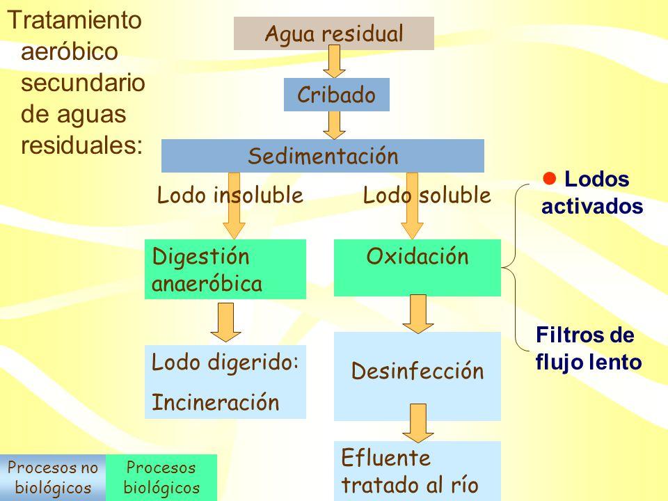 Tipos de tratamientos aerobios: 1. Crecimiento suspendido –Lagunas de oxidación (disperso) –Lodos activados (agregados) 2. Biopelículas – Filtros de g