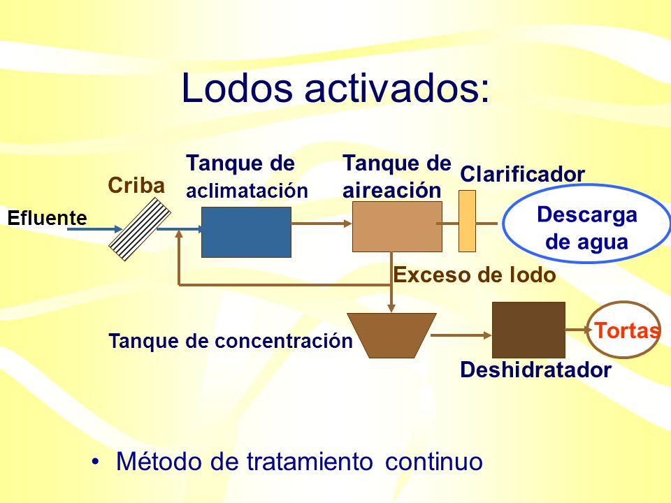 Tratamiento aeróbico secundario de aguas residuales: Agua residual SedimentaciónCribado Lodo insoluble Digestión anaeróbica Lodo digerido: Incineració