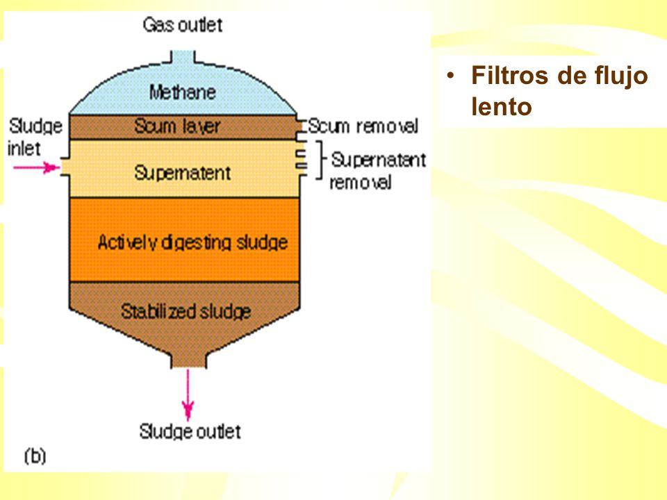 Se forman flocs de microbios en los cuales la materia orgánica es a la vez adsorbida y oxidada. Los flocs sedimentan en un tanque agujereado, y son in