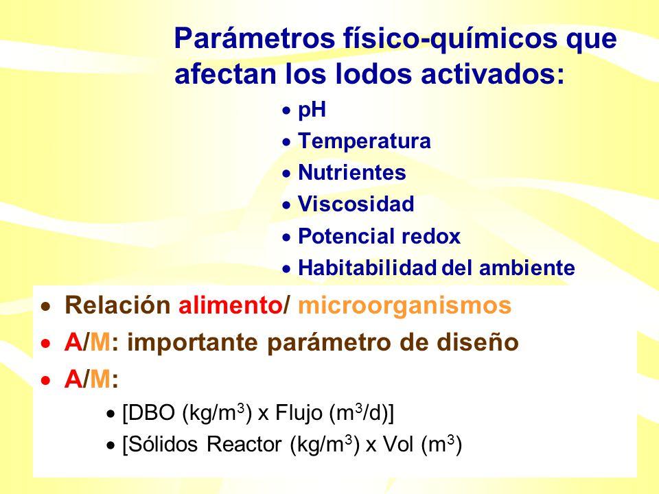 Diversidad Microbiana de los lodos activados: Protozoarios ciliados (Vorticella) Hongos y levaduras ( Menor densidad) Bacterias Escherichia coli Enter