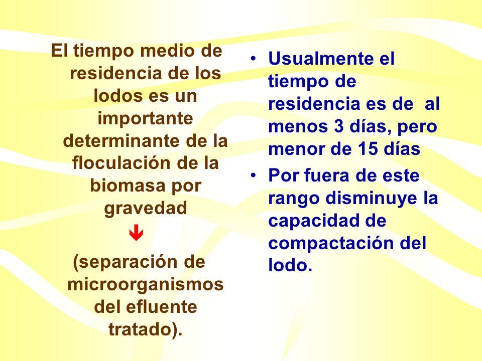Sedimentación secundaria Tiempo medio de residencia celular (MCRT :Mean Cell Residence Time) Crecimiento disperso: No ocurre floculación La sedimentac