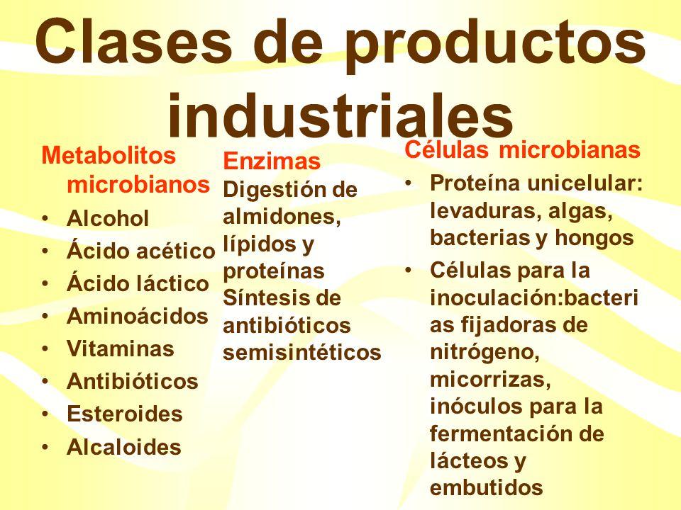 Clases de productos industriales Metabolitos microbianos Alcohol Ácido acético Ácido láctico Aminoácidos Vitaminas Antibióticos Esteroides Alcaloides Células microbianas Proteína unicelular: levaduras, algas, bacterias y hongos Células para la inoculación:bacteri as fijadoras de nitrógeno, micorrizas, inóculos para la fermentación de lácteos y embutidos Enzimas Digestión de almidones, lípidos y proteínas Síntesis de antibióticos semisintéticos