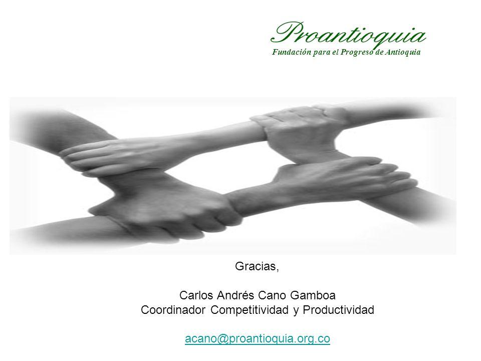 Gracias, Carlos Andrés Cano Gamboa Coordinador Competitividad y Productividad acano@proantioquia.org.co Fundación para el Progreso de Antioquia