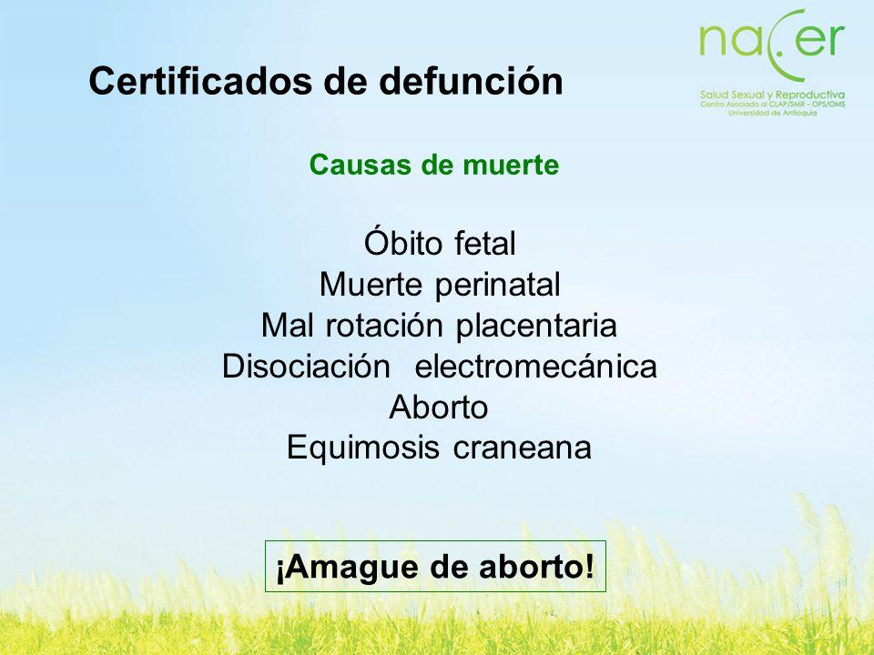 Certificados de defunción Causas de muerte Óbito fetal Muerte perinatal Mal rotación placentaria Disociación electromecánica Aborto Equimosis craneana