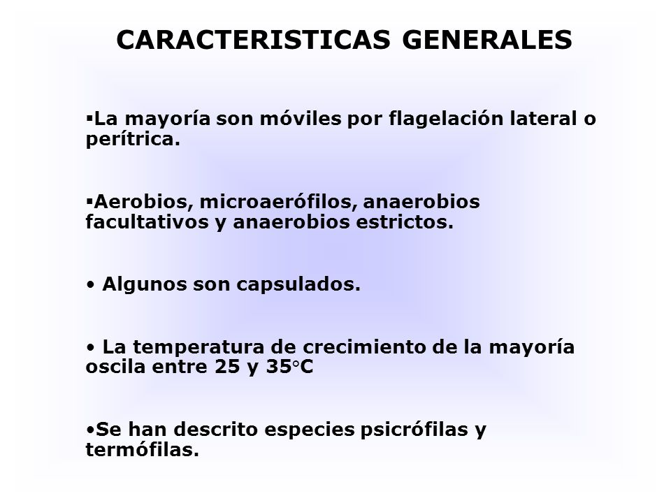 CARACTERISTICAS GENERALES La mayoría son móviles por flagelación lateral o perítrica.
