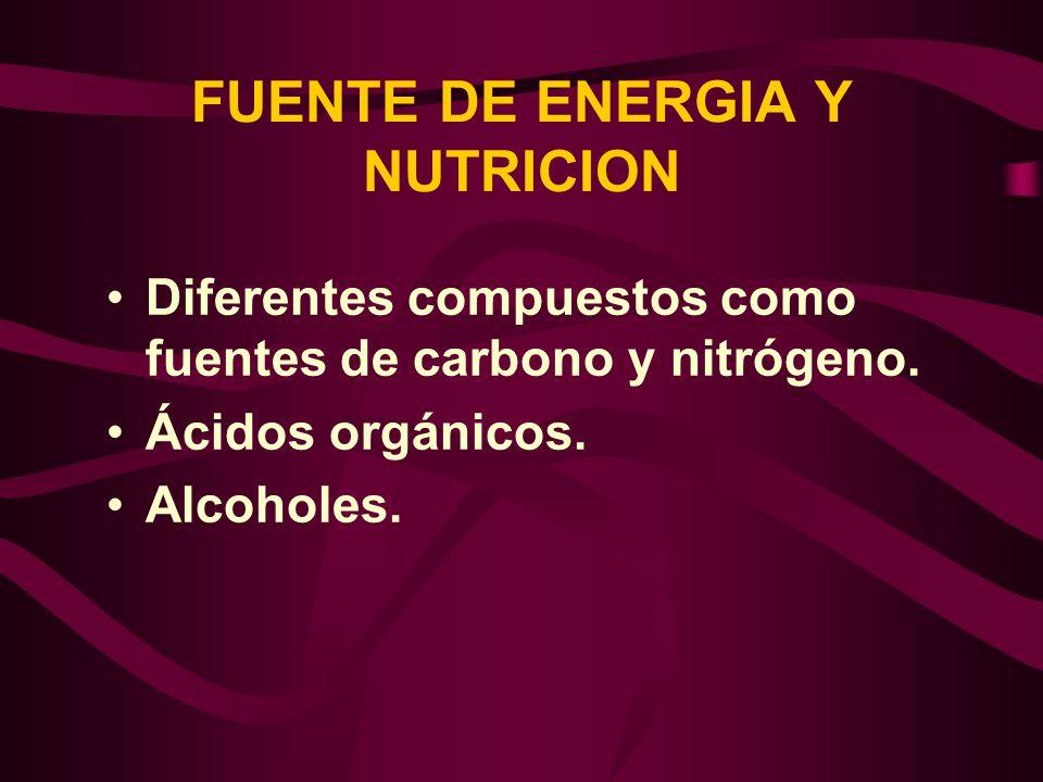 FUENTE DE ENERGIA Y NUTRICION Diferentes compuestos como fuentes de carbono y nitrógeno. Ácidos orgánicos. Alcoholes.