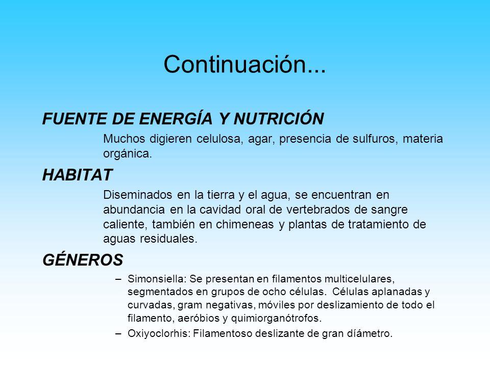 Continuación... FUENTE DE ENERGÍA Y NUTRICIÓN Muchos digieren celulosa, agar, presencia de sulfuros, materia orgánica. HABITAT Diseminados en la tierr