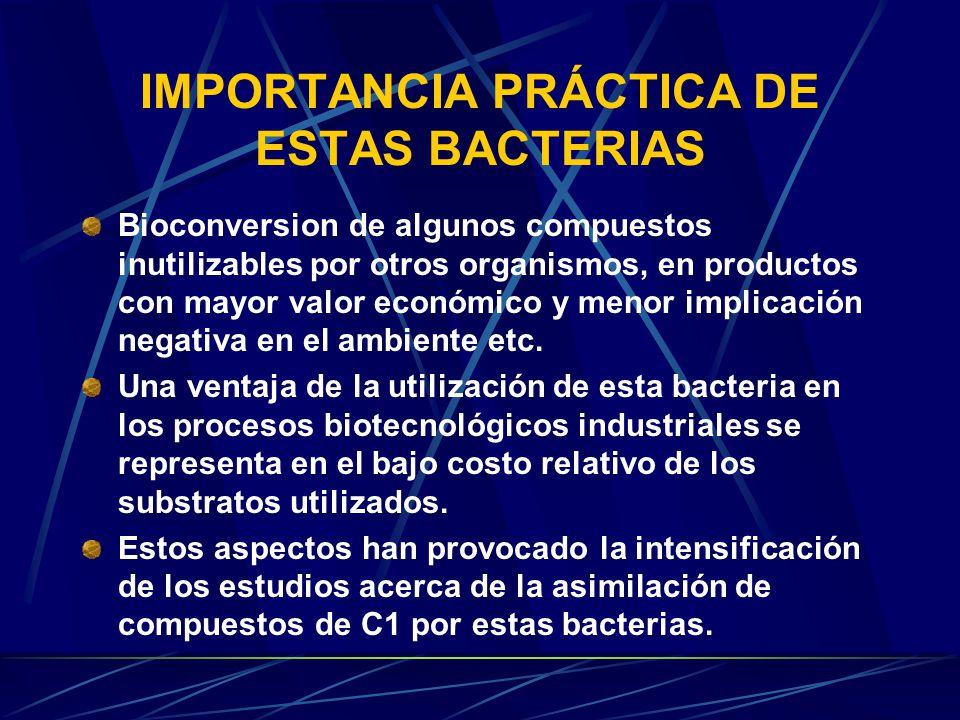 Vibrio En condiciones adversas pierden la rigidez de su pared celular No forman capsulas No son acidorresistentes Crecen facilmente en medios estandar de nutricion www.city.sapporo.jp/eisei/ syokuhin/Vibrio.gif