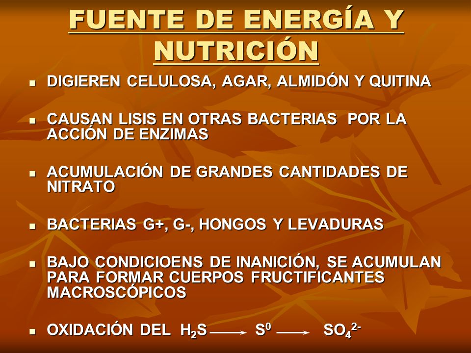 FUENTE DE ENERGÍA Y NUTRICIÓN DIGIEREN CELULOSA, AGAR, ALMIDÓN Y QUITINA DIGIEREN CELULOSA, AGAR, ALMIDÓN Y QUITINA CAUSAN LISIS EN OTRAS BACTERIAS PO
