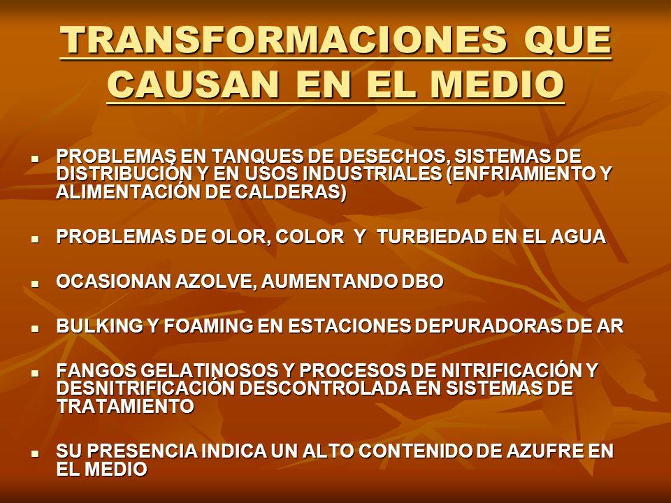 TRANSFORMACIONES QUE CAUSAN EN EL MEDIO PROBLEMAS EN TANQUES DE DESECHOS, SISTEMAS DE DISTRIBUCIÓN Y EN USOS INDUSTRIALES (ENFRIAMIENTO Y ALIMENTACIÓN