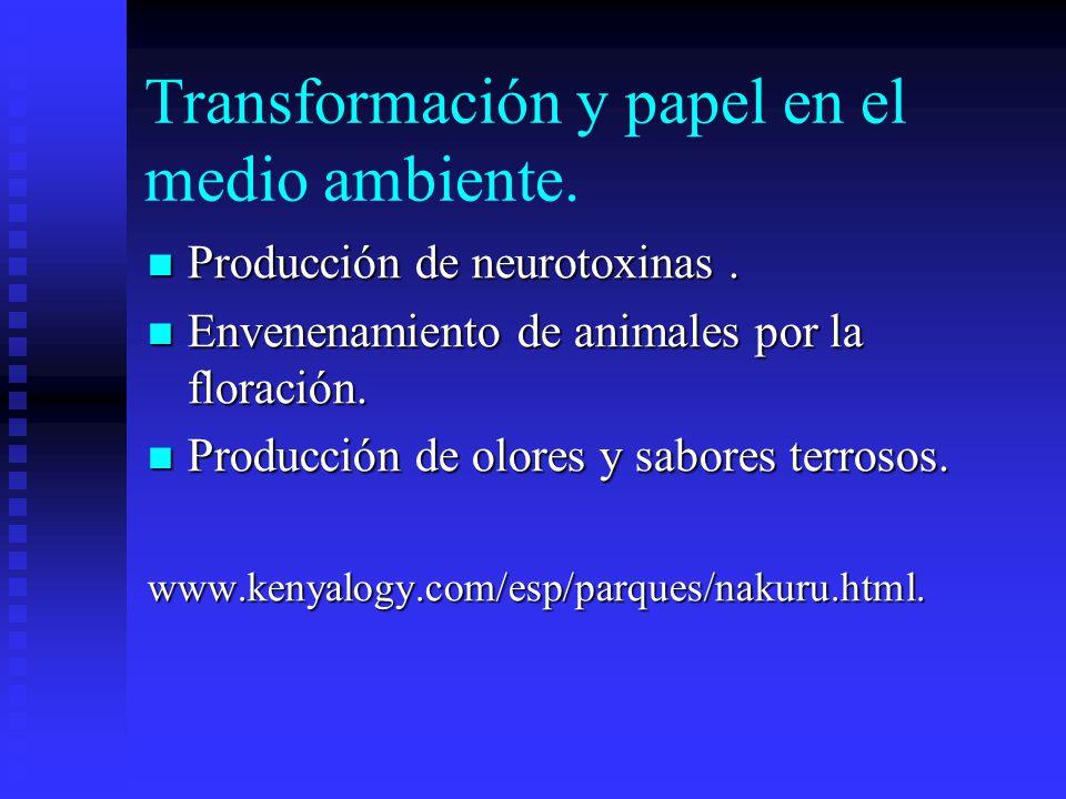 Transformación y papel en el medio ambiente.Producción de neurotoxinas.