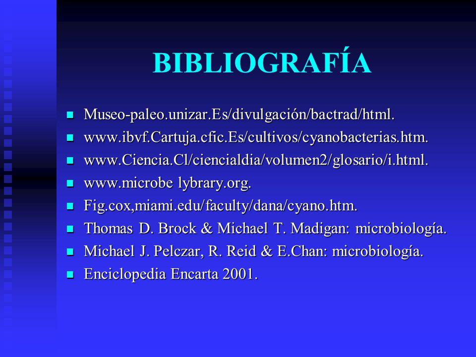 BIBLIOGRAFÍA Museo-paleo.unizar.Es/divulgación/bactrad/html.