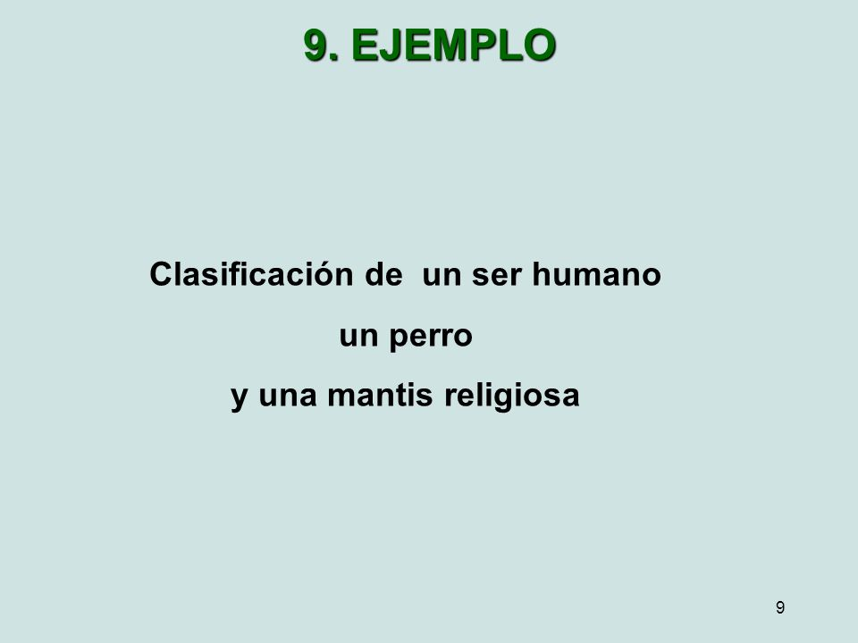 9 Clasificación de un ser humano un perro y una mantis religiosa 9. EJEMPLO