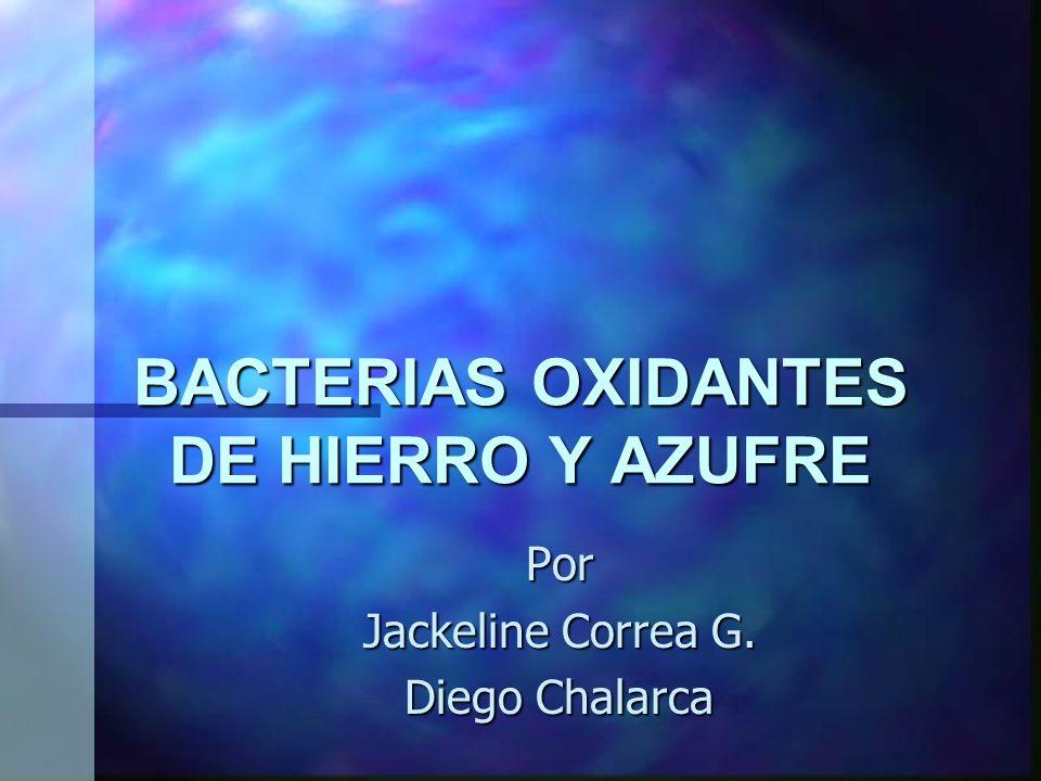 BACTERIAS OXIDANTES DE HIERRO Y AZUFRE Por Jackeline Correa G. Diego Chalarca