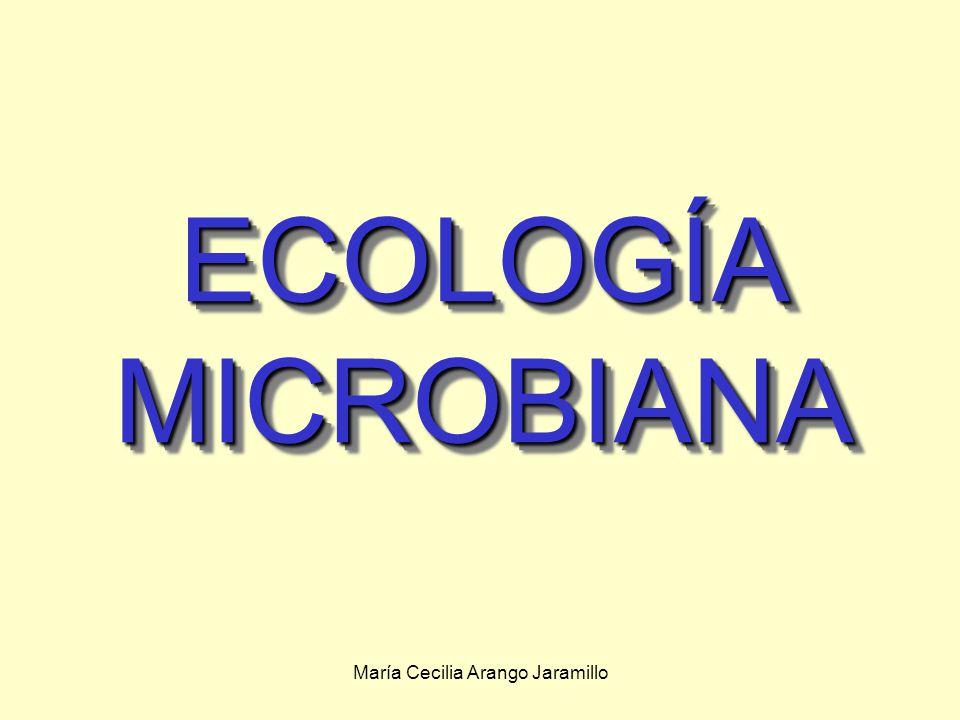 María Cecilia Arango Jaramillo ECOLOGÍA MICROBIANA