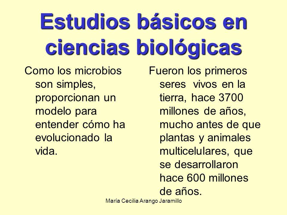 María Cecilia Arango Jaramillo Productos farmacéuticosProductos farmacéuticos Productos químicosProductos químicos Producidos industrialmente a gran escala por microorganismos seleccionados o modificados genéticamente La bioingeniería de productos útiles tales como antibióticos, suplementos del alimento, y productos químicos.