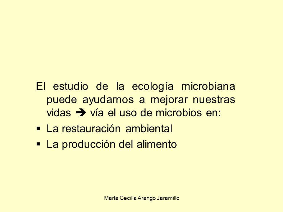 María Cecilia Arango Jaramillo ecología microbiana En los últimos tiempos, la preocupación por la calidad ambiental ha tenido como efecto un mayor interés por la ecología microbiana