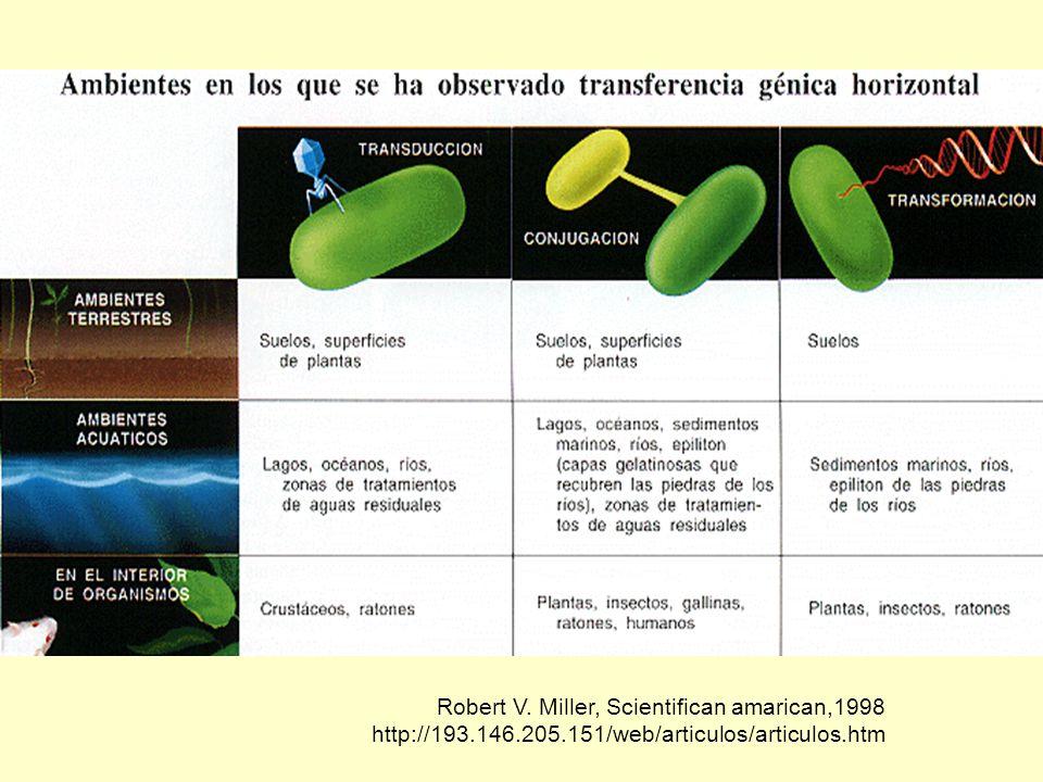 María Cecilia Arango Jaramillo También puede ocurrir en bacterias gram- negativas a través de un mecanismo distinto.