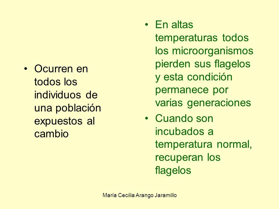 María Cecilia Arango Jaramillo Es la respuesta de los organismos a los cambios temporales Esta adaptación o ajuste se da entre los límites del genotipo 2.