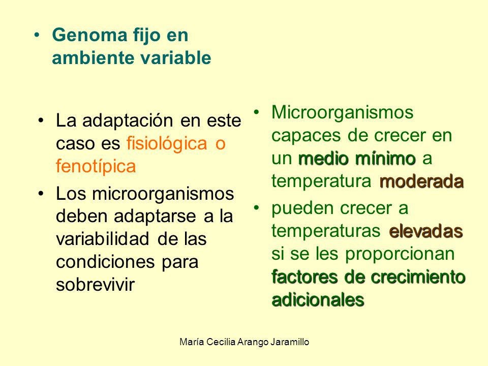 María Cecilia Arango Jaramillo Genoma fijo en ambiente variable Genoma variable en ambiente fijo Genoma variable en ambiente variable Interacciones genoma - ambiente