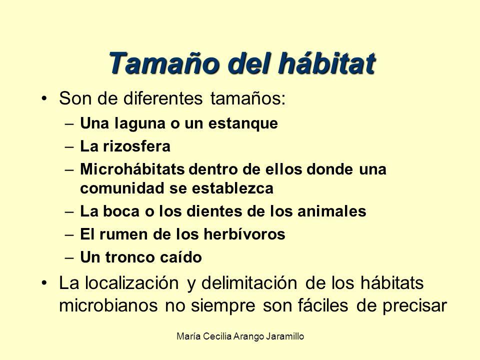 María Cecilia Arango Jaramillo Las condiciones ambientales tienen efecto selectivo sobre las poblaciones microbianas Las condiciones ambientales tienen efecto selectivo sobre las poblaciones microbianas.