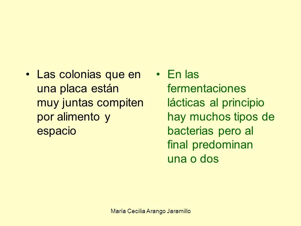 María Cecilia Arango Jaramillo Los organismos que se establecen el mismo nicho ecológico Necesitan los mismos alimentos y condiciones ambientales tienen gran influencia entre sí El mejor adaptado predomina o elimina completamente a los otros Competencia, -/-: