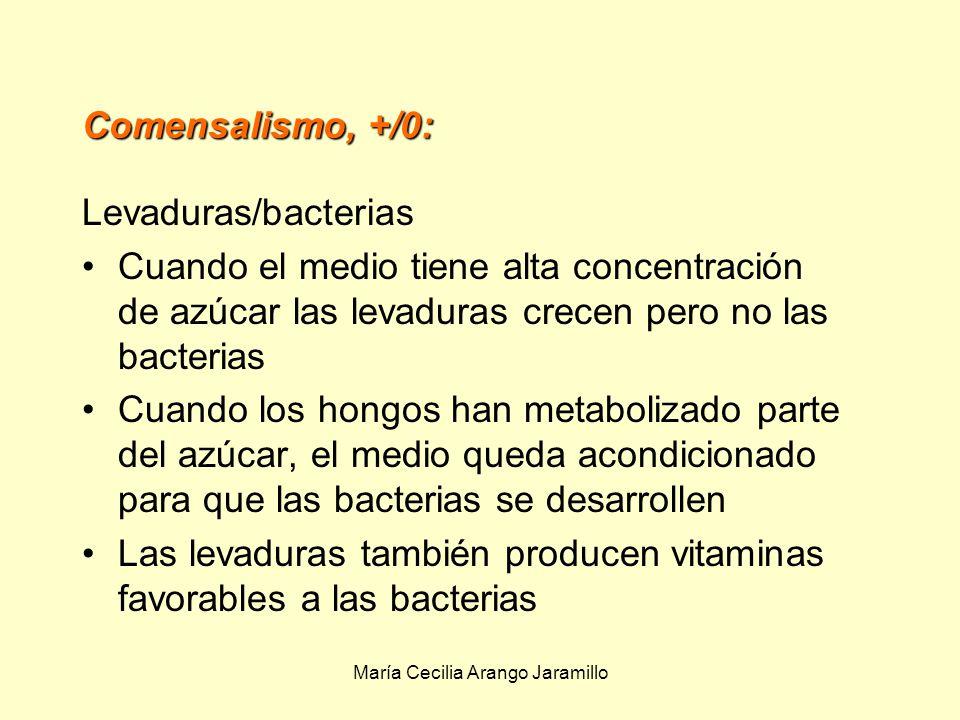 María Cecilia Arango Jaramillo Líquen: El hongo obtiene del alga productos metabólicos como glucosa y alcoholes El alga se beneficia de la capacidad que tienen las paredes del hongo para retener agua