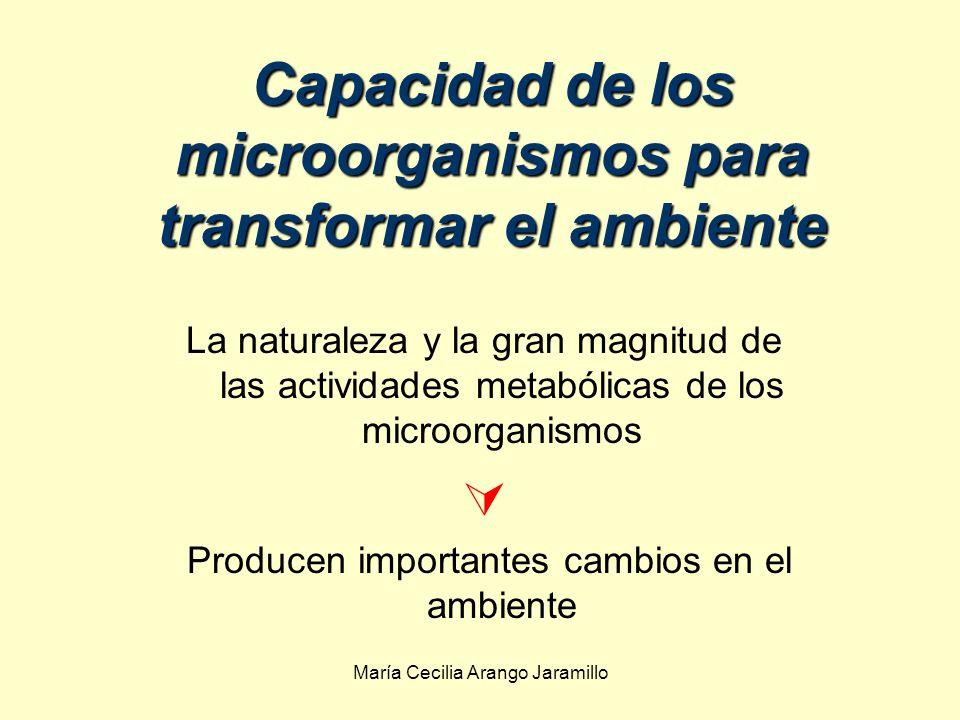 María Cecilia Arango Jaramillo Capacidad de los microorganismos para transformar el ambiente La naturaleza y la gran magnitud de las actividades metabólicas de los microorganismos Producen importantes cambios en el ambiente
