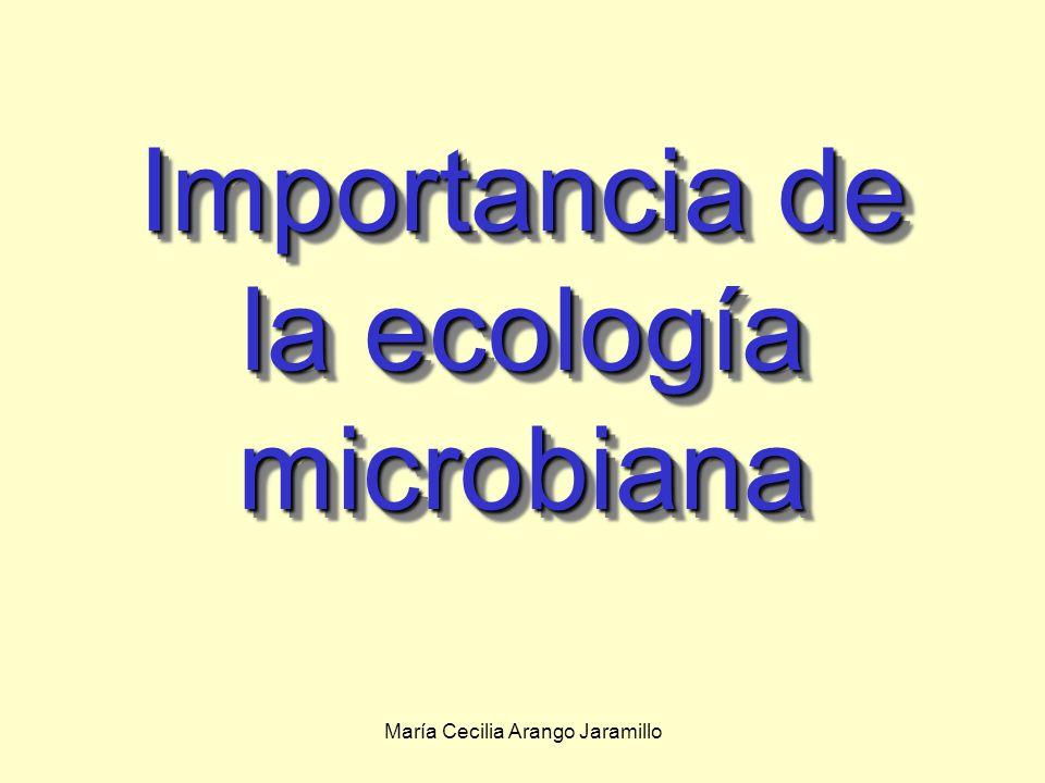 María Cecilia Arango Jaramillo Interacciones de los microbios con plantas y animales: Interacciones Planta-Microbio Simbiosis Mutualista: Rhizobium: convierte el nitrógeno a una forma que puede ser utilizado por las plantas.