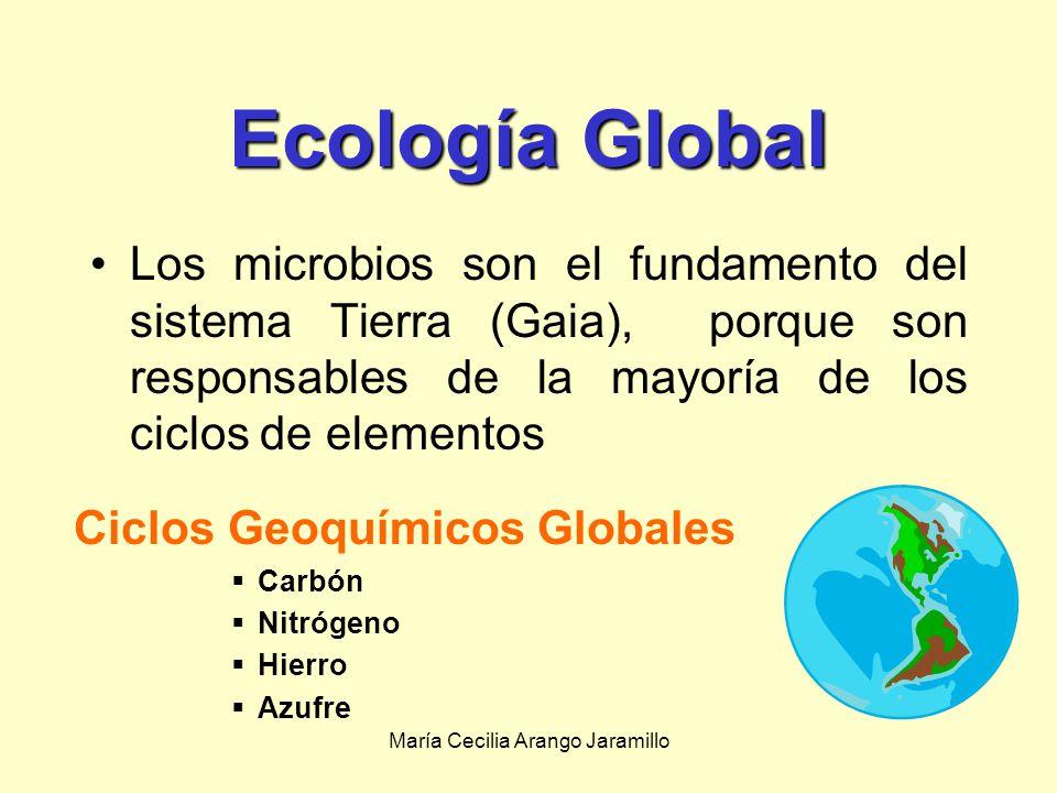 María Cecilia Arango Jaramillo Importancia de la ecología microbiana