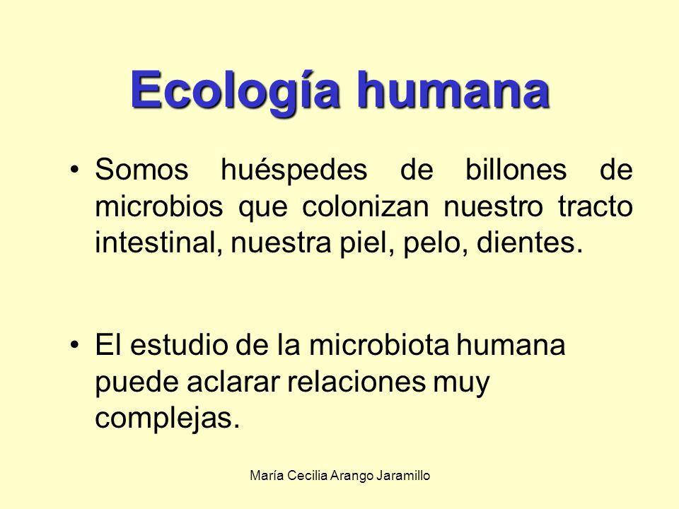 María Cecilia Arango Jaramillo Qué papel desempeñan los microbios en la tendencia al calentamiento global.