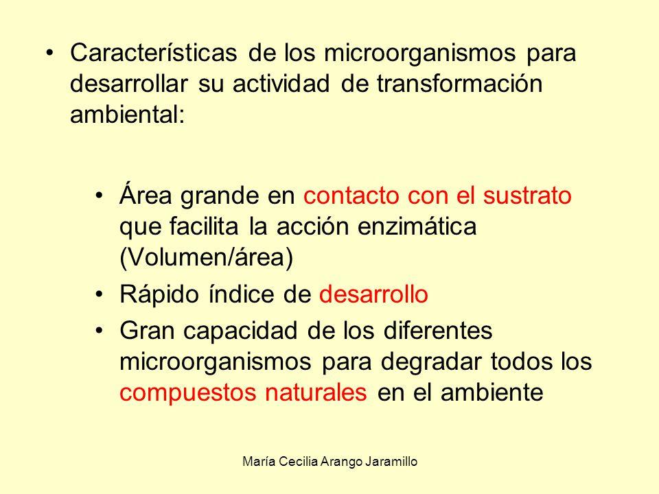 María Cecilia Arango Jaramillo Características de los microorganismos para desarrollar su actividad de transformación ambiental: Área grande en contacto con el sustrato que facilita la acción enzimática (Volumen/área) Rápido índice de desarrollo Gran capacidad de los diferentes microorganismos para degradar todos los compuestos naturales en el ambiente