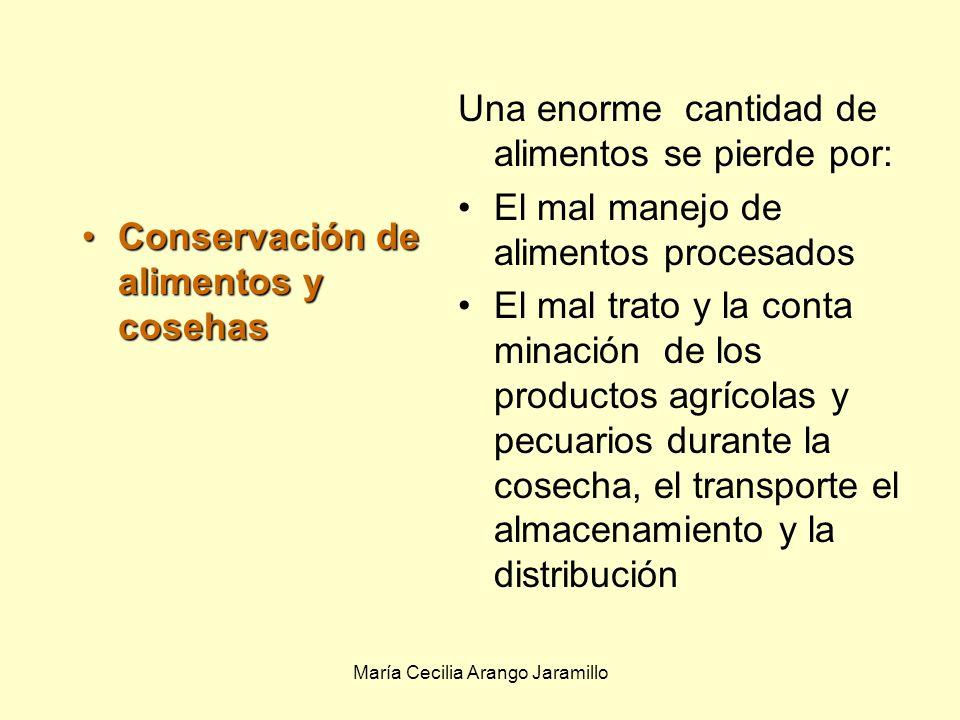María Cecilia Arango Jaramillo Microbiología de la digestión: Los microbios se utilizan como probióticos, un suplemento de la digestión que coloniza los intestinos, previniendo la colonización microbios causantes de enfermedad.