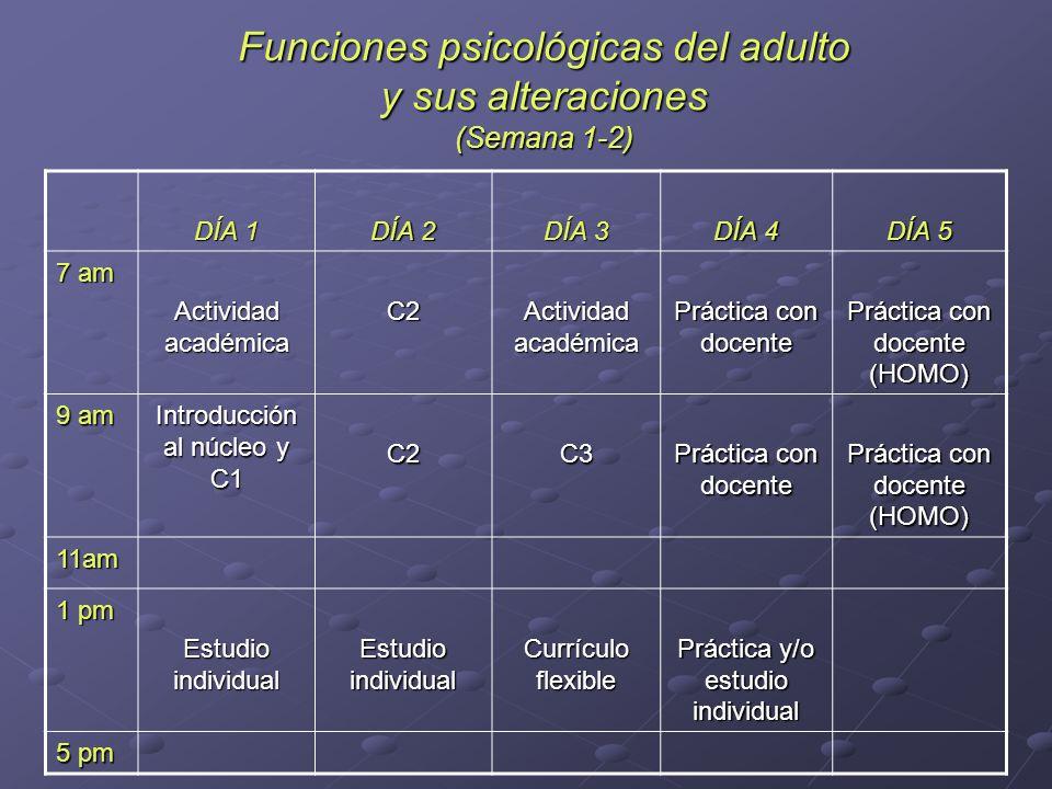 Funciones psicológicas del adulto y sus alteraciones (Semana 1-2) DÍA 1 DÍA 2 DÍA 3 DÍA 4 DÍA 5 7 am Actividad académica C2 Práctica con docente Práct