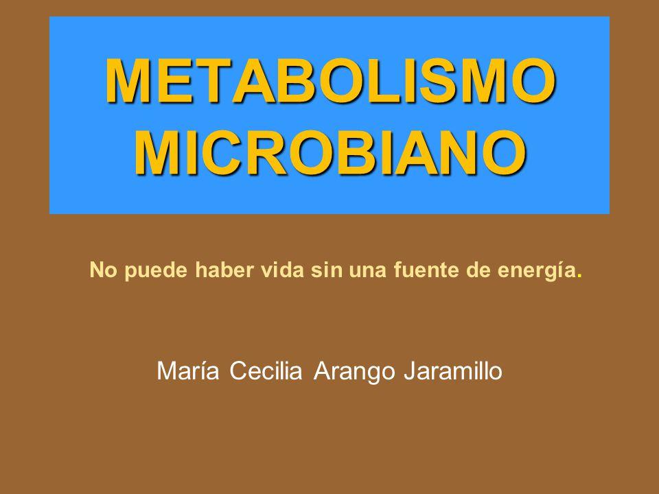 METABOLISMO MICROBIANO María Cecilia Arango Jaramillo No puede haber vida sin una fuente de energía.