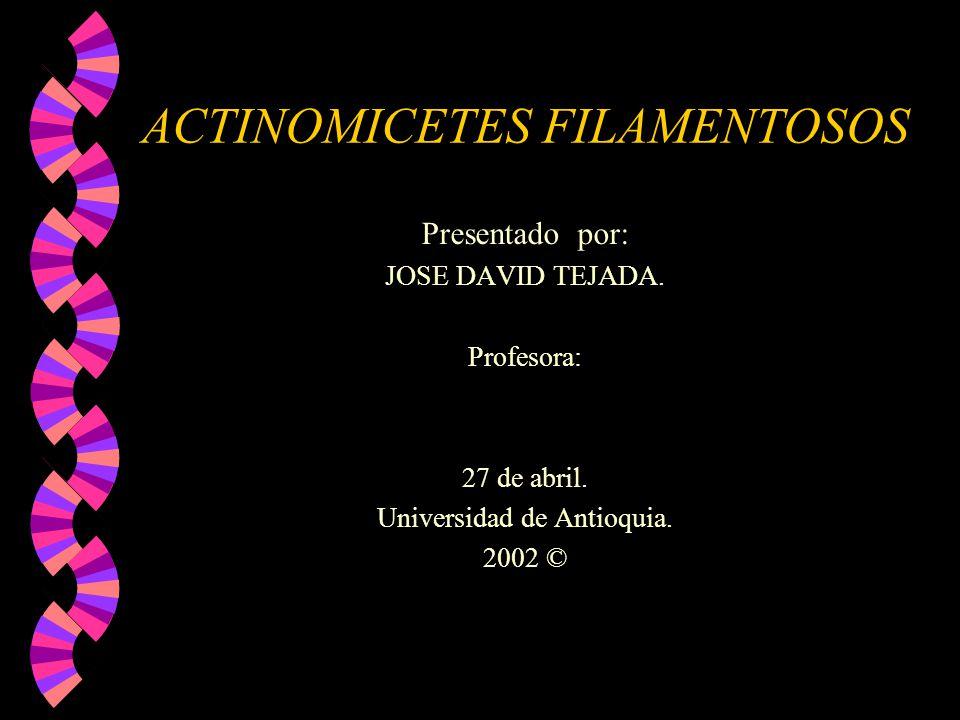 ACTINOMICETES FILAMENTOSOS Presentado por: JOSE DAVID TEJADA. Profesora: 27 de abril. Universidad de Antioquia. 2002 ©
