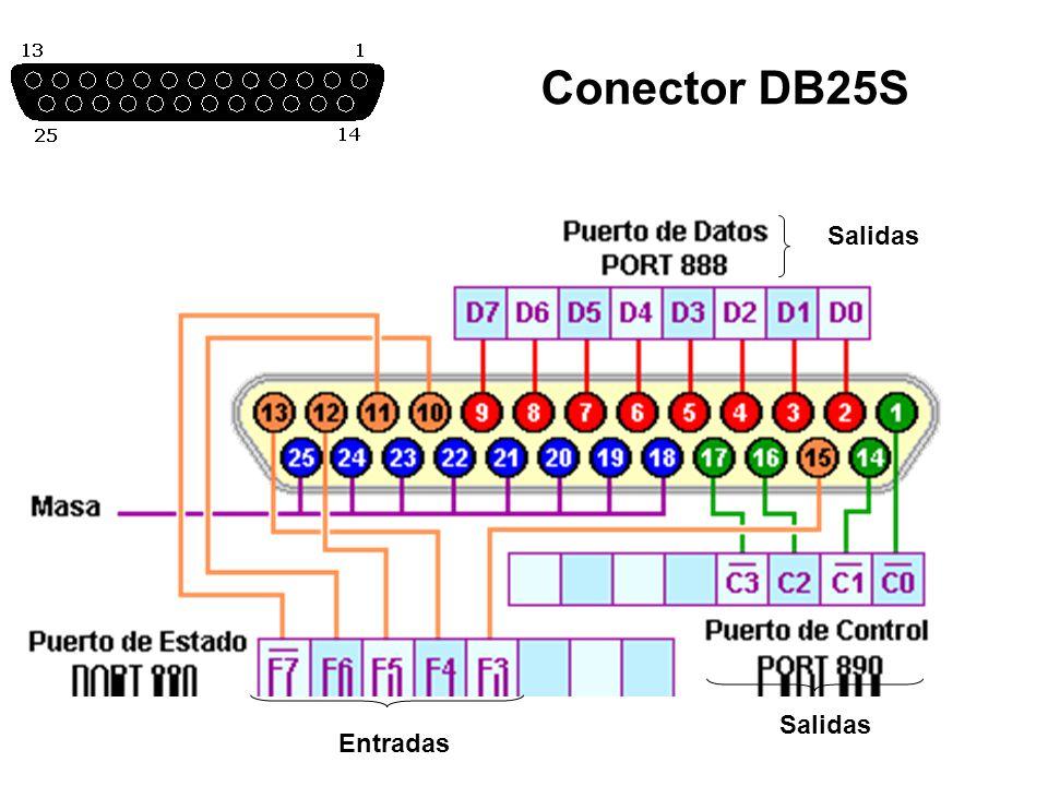 Conector DB25S Salidas Entradas Salidas
