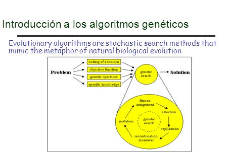 Introducción a los algoritmos genéticos Evolutionary algorithms are stochastic search methods that mimic the metaphor of natural biological evolution