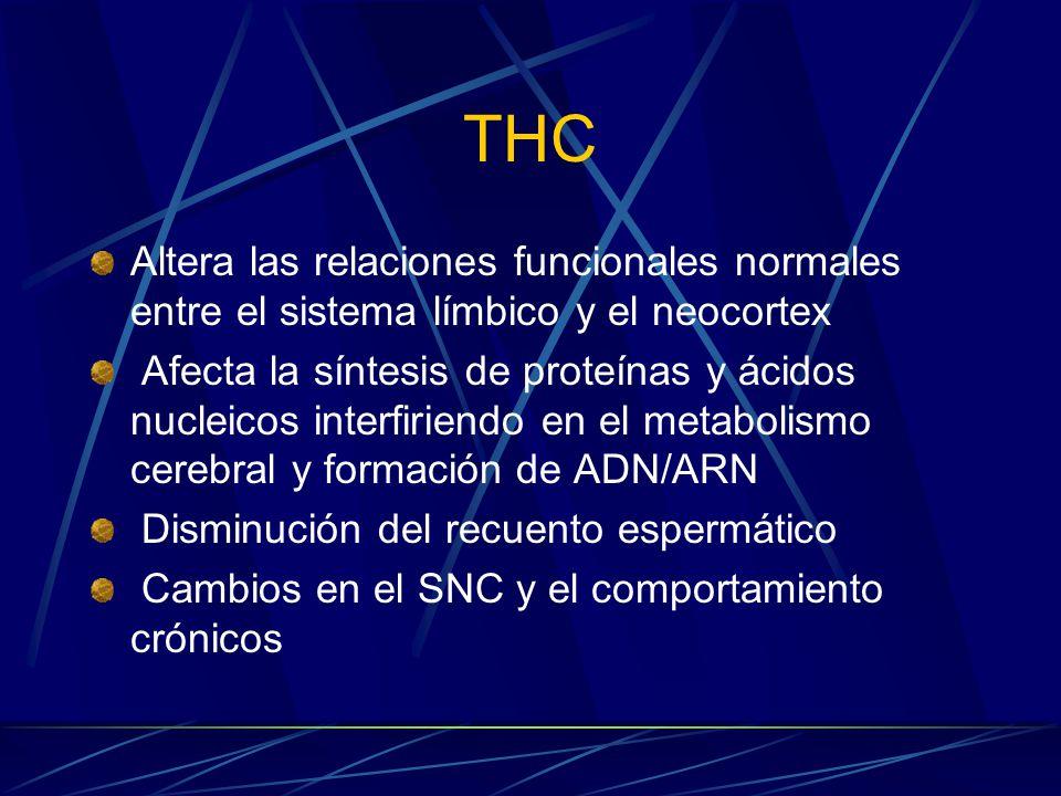 THC Altera las relaciones funcionales normales entre el sistema límbico y el neocortex Afecta la síntesis de proteínas y ácidos nucleicos interfiriendo en el metabolismo cerebral y formación de ADN/ARN Disminución del recuento espermático Cambios en el SNC y el comportamiento crónicos