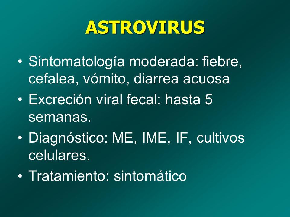 ASTROVIRUS Sintomatología moderada: fiebre, cefalea, vómito, diarrea acuosa Excreción viral fecal: hasta 5 semanas. Diagnóstico: ME, IME, IF, cultivos