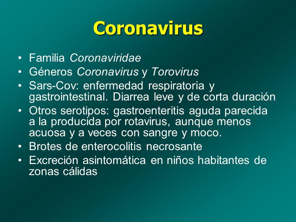 Coronavirus Familia Coronaviridae Géneros Coronavirus y Torovirus Sars-Cov: enfermedad respiratoria y gastrointestinal. Diarrea leve y de corta duraci