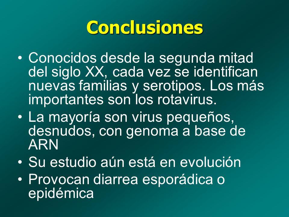 Conclusiones Conocidos desde la segunda mitad del siglo XX, cada vez se identifican nuevas familias y serotipos. Los más importantes son los rotavirus