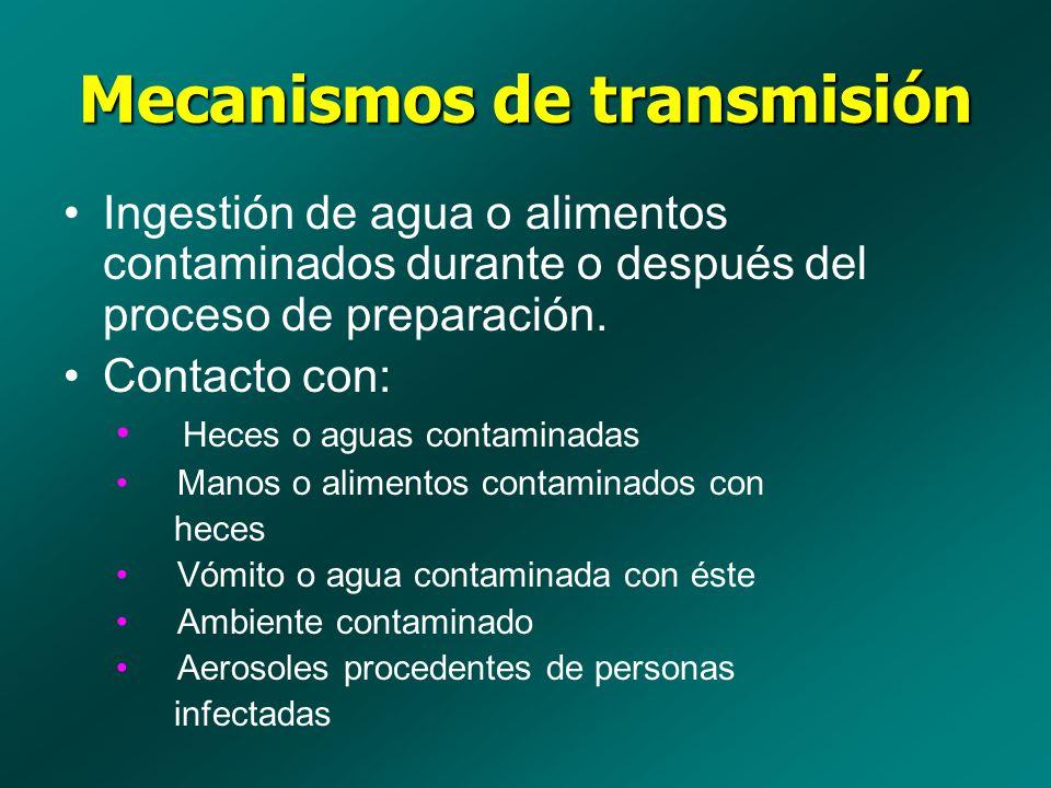 Mecanismos de transmisión Ingestión de agua o alimentos contaminados durante o después del proceso de preparación. Contacto con: Heces o aguas contami