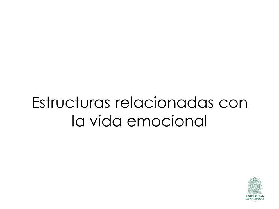 Estructuras relacionadas con la vida emocional