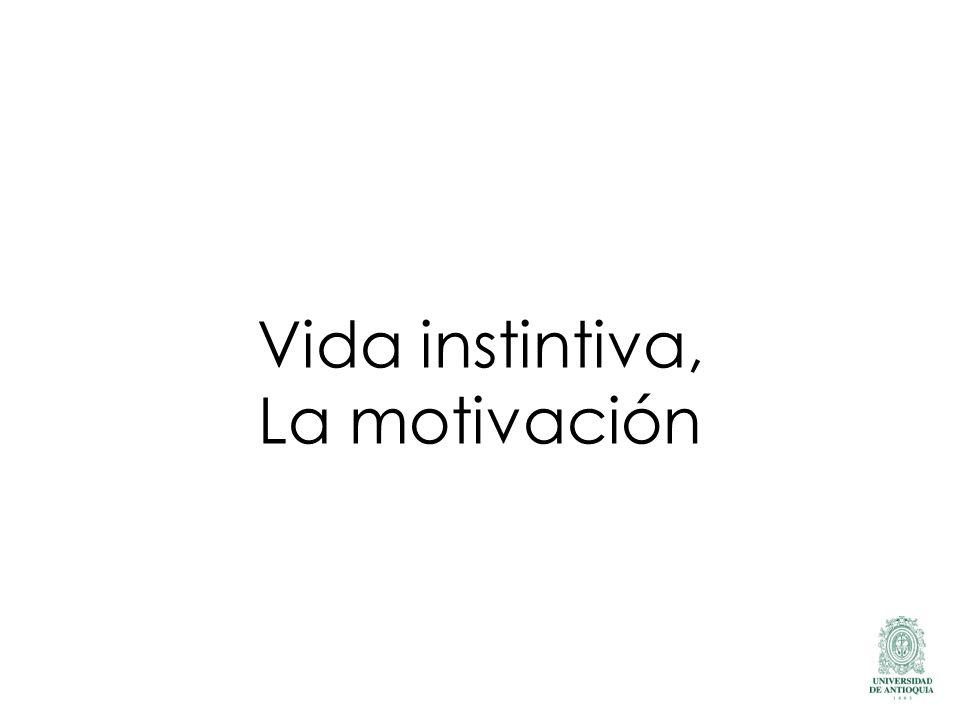 Vida instintiva, La motivación