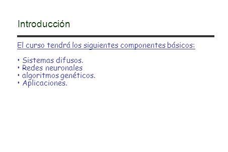 El curso tendrá los siguientes componentes básicos: Sistemas difusos. Redes neuronales algoritmos genéticos. Aplicaciones. Introducción