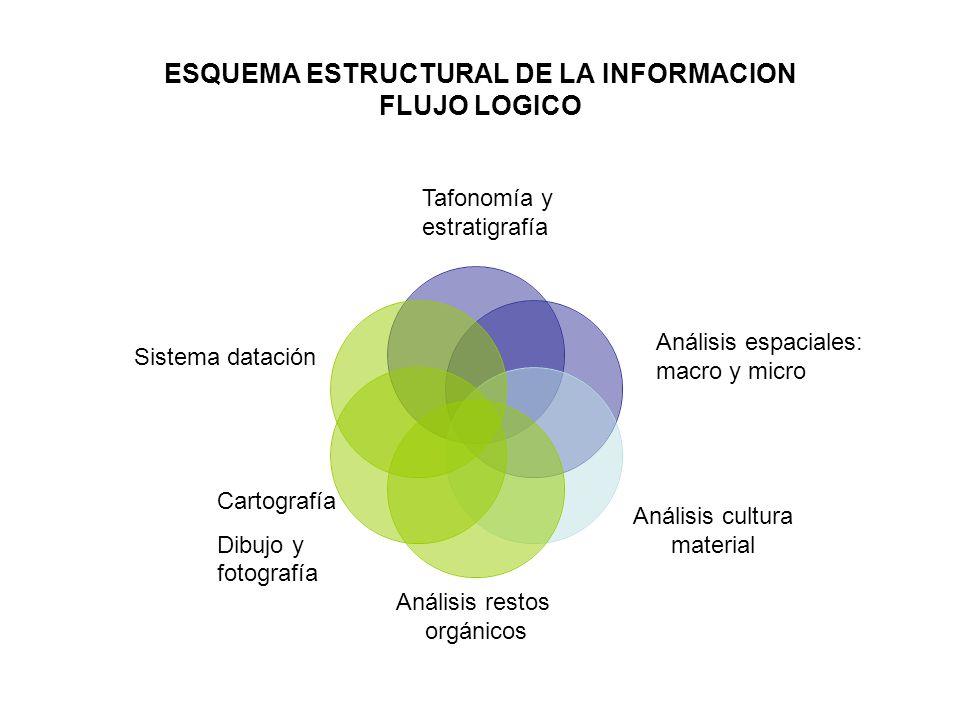 ESQUEMA ESTRUCTURAL DE LA INFORMACION FLUJO LOGICO Análisis cultura material Análisis restos orgánicos Cartografía Dibujo y fotografía Sistema datació