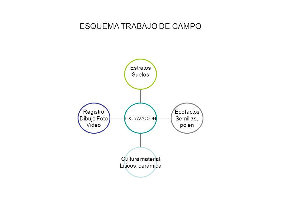 ESQUEMA TRABAJO DE CAMPO EXCAVACION Estratos Suelos Ecofactos Semillas, polen Cultura material Líticos, cerámica Registro Dibujo Foto Video