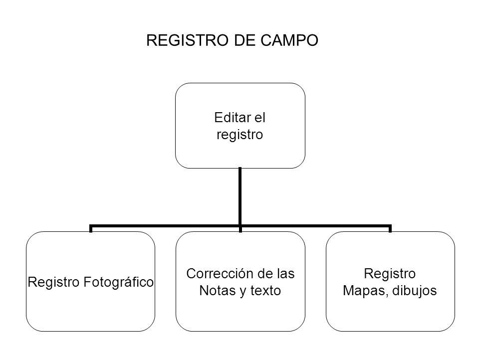 REGISTRO DE CAMPO Editar el registro Registro Fotográfico Corrección de las Notas y texto Registro Mapas, dibujos